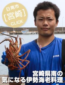 宮崎県南の気になる伊勢海老料理2015