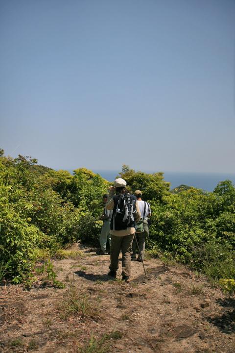 島野浦島~最東端の絶景が ...