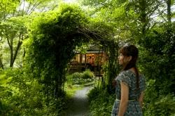 サンクチュアリ・ガーデン