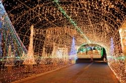 宮崎クリスマスイルミネーション特集・川南町トロントロンドーム
