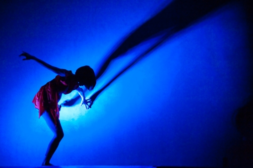別府現代芸術フェスティバル2012 別府混浴温泉世界 内覧バスツアー 別府永久劇場「混浴ゴールデンナイト」東野祥子