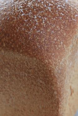 ぶらうにい・レーズン酵母の穀物コーヒー食パン