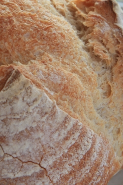ぶらうにい・田舎パン