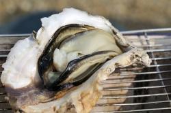 髙平屋・海鮮焼き岩牡蠣