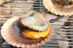 髙平屋・海鮮焼き緋扇貝