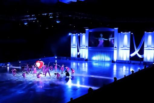 Prince Ice World 2015プリンス アイス ワールド 鹿児島公演