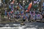 中九州の風景01 杖立温泉鯉のぼり祭り