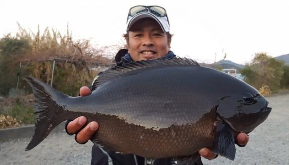20171221-omaga54cm 2.85kg