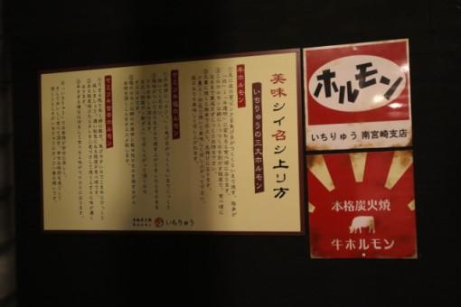 1ryu_15-02-18_007