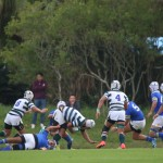 rugby2016-11-13035