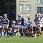 rugby2016-11-13041