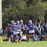 rugby2016-11-13048