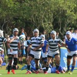rugby2016-11-13049
