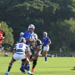 rugby2016-11-13053