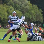 rugby2016-11-13060