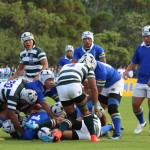 rugby2016-11-13065