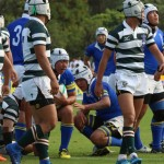 rugby2016-11-13066