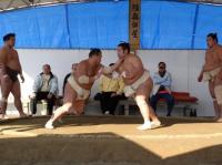 豊桜vsも十文字