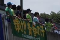 09sotai-hk-14.jpg