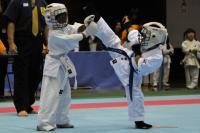 20081125-kyokushin-031.jpg