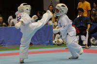 20081125-kyokushin-032.jpg