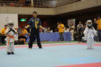 20081125-kyokushin-034.jpg