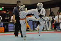20081125-kyokushin-063.jpg