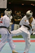 20081125-kyokushin-075.jpg