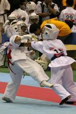 20081125-kyokushin-077.jpg