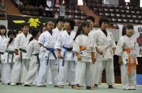 20090720-kyokushin-065.jpg