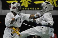 20090720-kyokushin-082.jpg