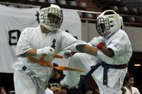 20090720-kyokushin-087.jpg