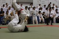 ks08-jd-kikukawa3-2_.jpg