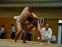 so08-sumo-2-1.jpg