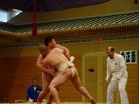 so08-sumo-2-3.jpg