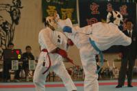 sotai08-wd-karate-7_.jpg